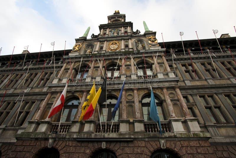 安特卫普比利时市政厅 免版税图库摄影