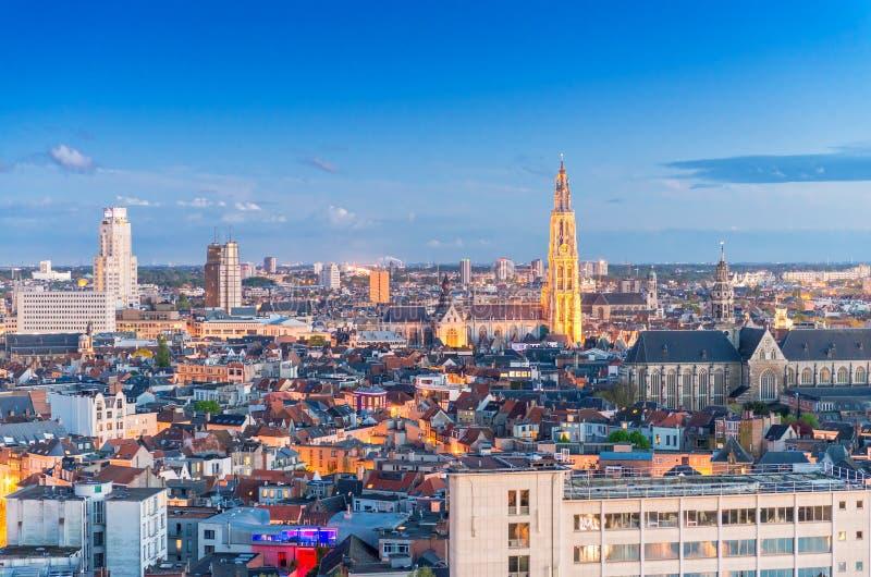 安特卫普比利时 空中城市视图在晚上 免版税库存图片
