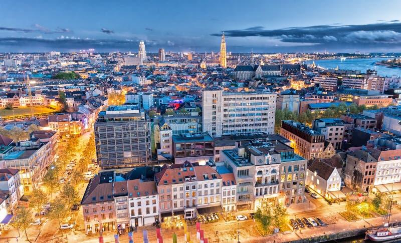 安特卫普比利时 空中城市视图在晚上 库存图片