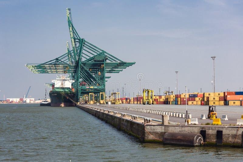 安特卫普港口有口岸起重机和大承运人的 库存照片