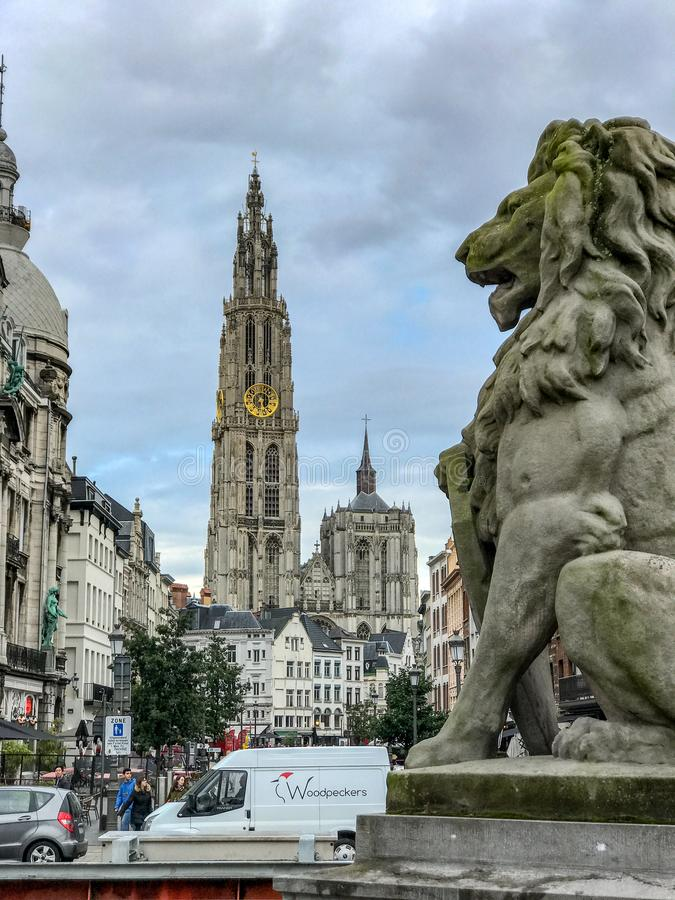安特卫普石狮子,有我们的夫人大教堂的在背景中 库存图片