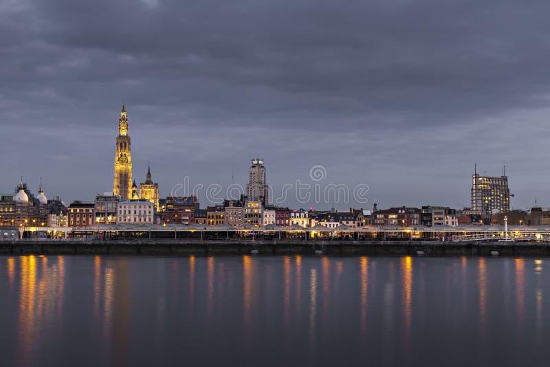 安特卫普,有我们的在左边的夫人大教堂的比利时美好的地平线  库存照片