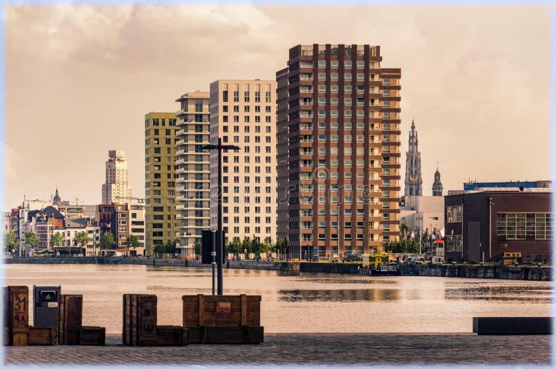 安特卫普,比利时全景  免版税库存照片