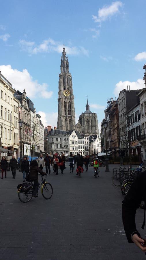 ????Belgien Kathedrale 免版税库存照片