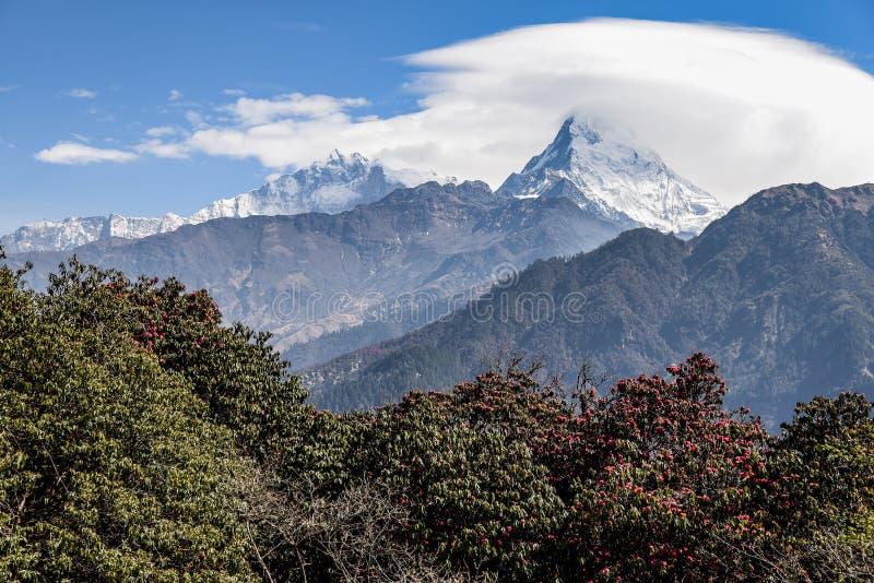 安纳布尔纳峰山脉在尼泊尔 图库摄影