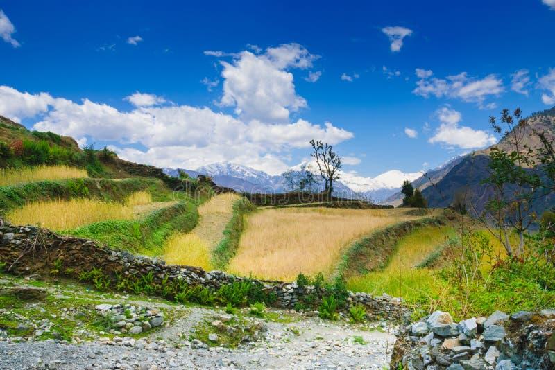 安纳布尔纳峰电路山,普遍的迁徙的足迹在尼泊尔 免版税库存图片