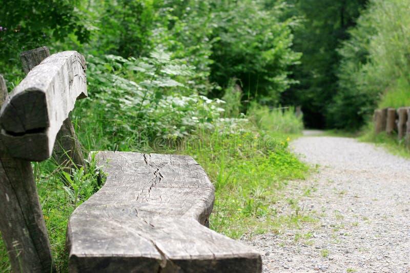 Download 安置放松 库存图片. 图片 包括有 森林, 跟踪, 木头, 健康, 长凳, 放松, 结构, 室外, 背包, 结构树 - 180197
