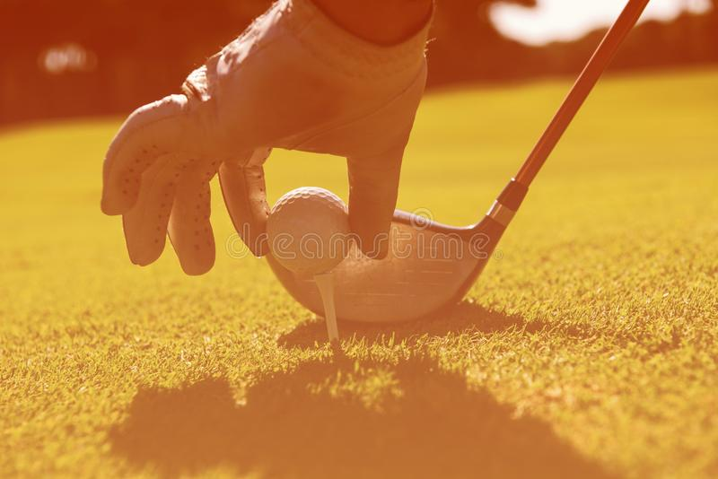 安置球的高尔夫球运动员在发球区域 免版税库存照片