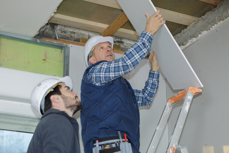 安装休息干式墙的建造者在天花板 库存图片