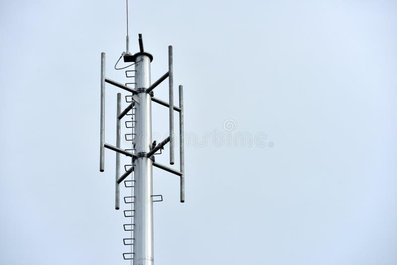 安装无线通信系统的天线的塔建筑 库存图片