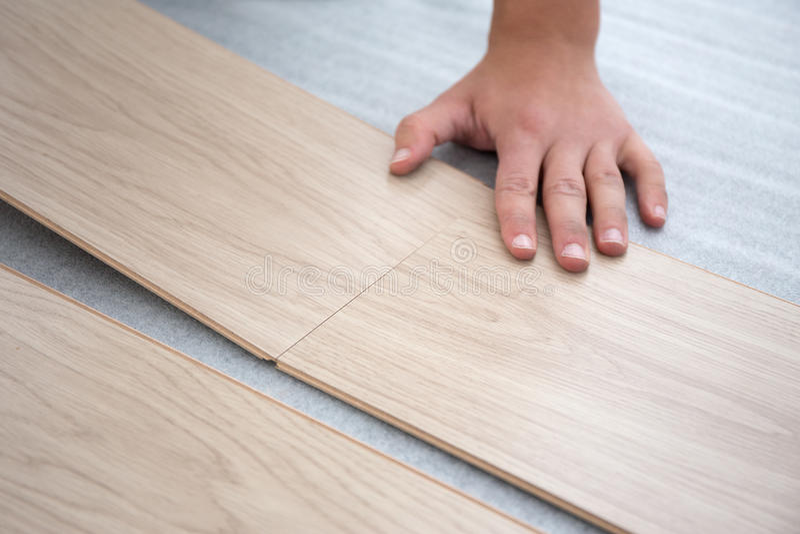 安装木地板的男性手 库存图片