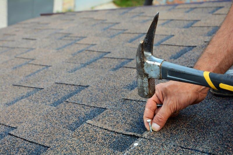 安装沥清屋顶木瓦的工作者手 在钉子的工作者锤子在屋顶 盖屋顶的人锤击在屋顶木瓦的一个钉子 免版税库存照片