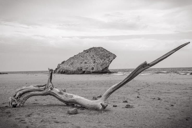 安达卢西亚的海滩 库存图片