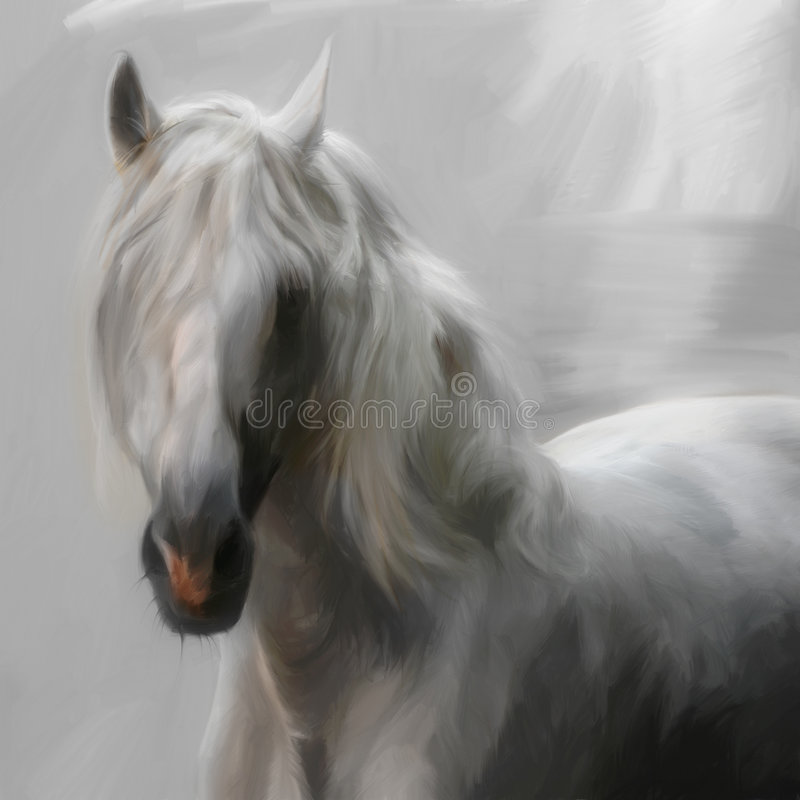 安达卢西亚的马 向量例证