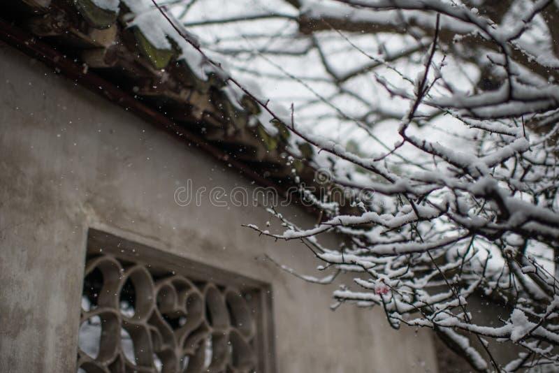 安静的中国古老水镇村庄雪,在周庄,苏州 库存照片