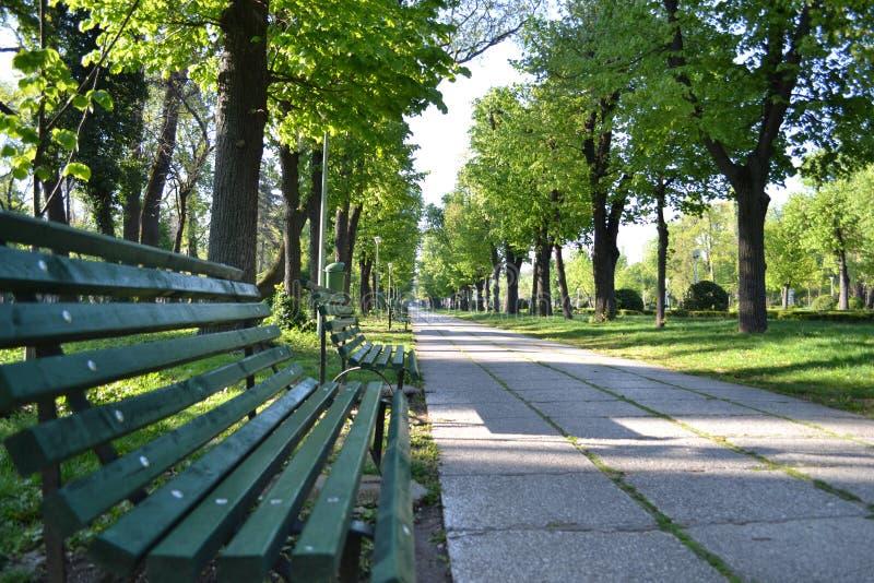安静的公园 免版税图库摄影