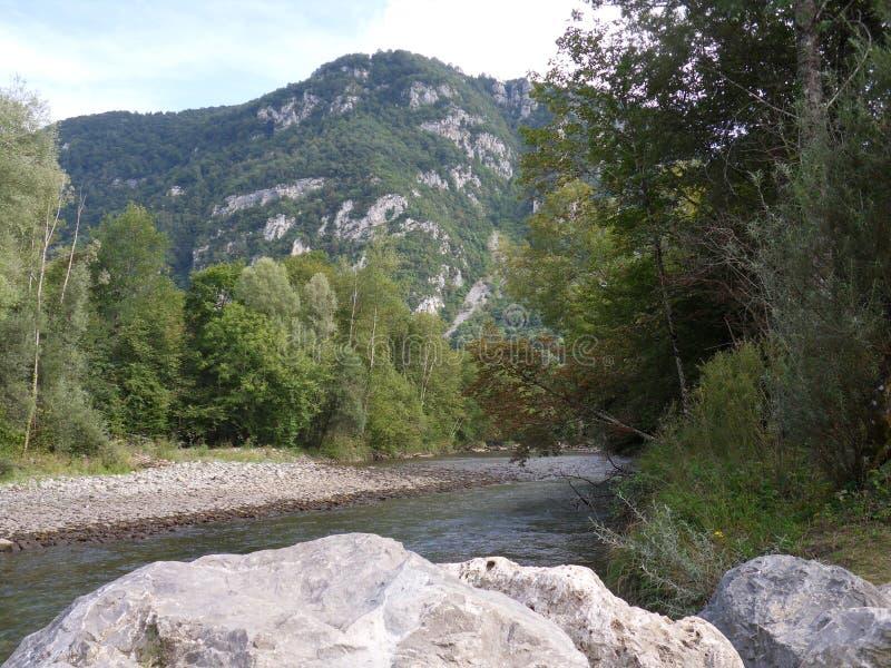安静的山小河在夏天 图库摄影