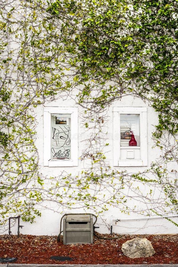 安静的庭院 库存图片