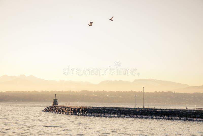安静的早晨港口 库存图片