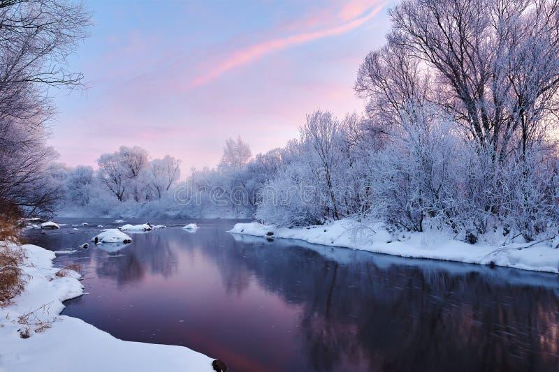 安静的河水 免版税库存图片