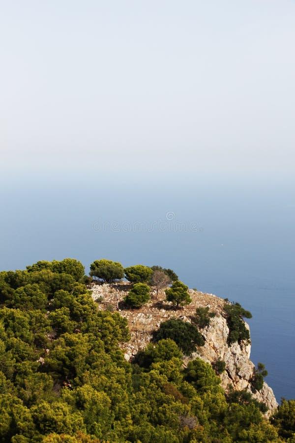 安静的海景,与绿色杉树 免版税图库摄影