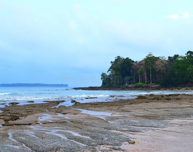 安静的海波浪、多岩石的海滩、高大的树木和清楚的天空-西塔普尔,尼尔海岛,安达曼尼科巴,印度 免版税库存图片