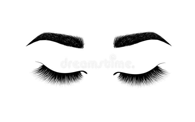 完全被塑造的眼眉 永久构成和刺字 眼眉的化妆用品 睫毛引伸 美好的构成 厚实的fu 皇族释放例证