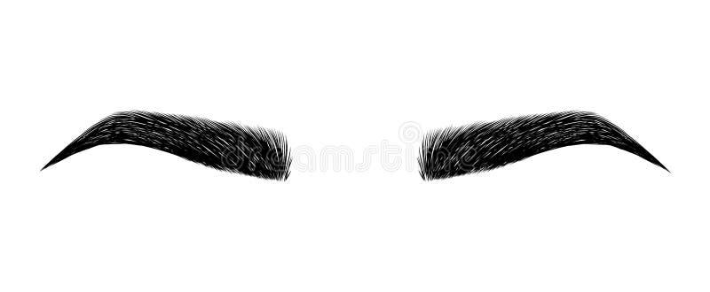 完全被塑造的眼眉 永久构成和刺字 眼眉的化妆用品 向量例证