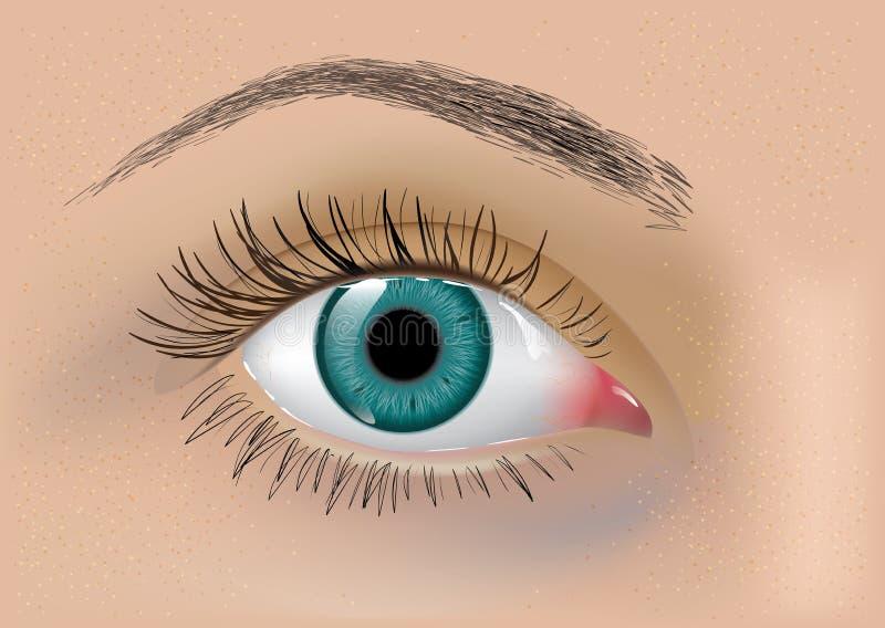 完善的传染媒介眼睛 库存例证