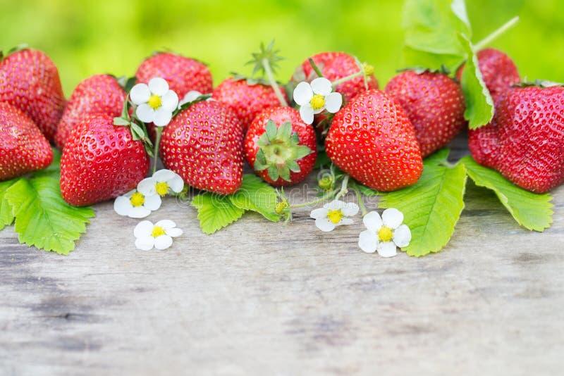 完善的在木头的芳香甜草莓边界 库存照片