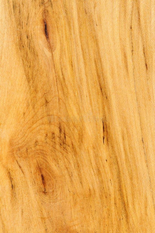 完成的前楼层硬木范例 库存图片