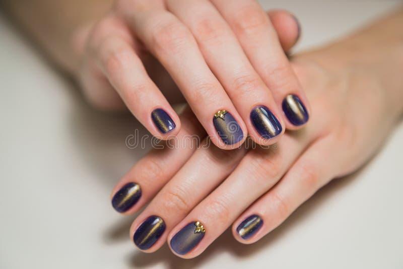 完成的紫色紫胶修指甲,钉子美容院的妇女 免版税库存图片