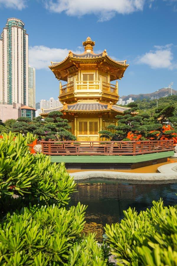 完美金黄亭子在南连家庭院,香港里 库存图片