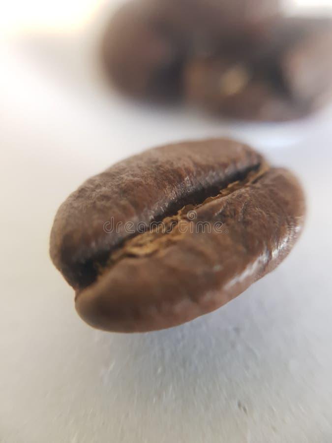宏观咖啡豆 库存图片