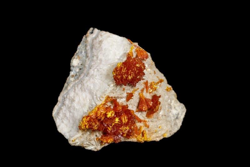 宏观在黑背景的钒铅矿矿物石头 免版税库存照片
