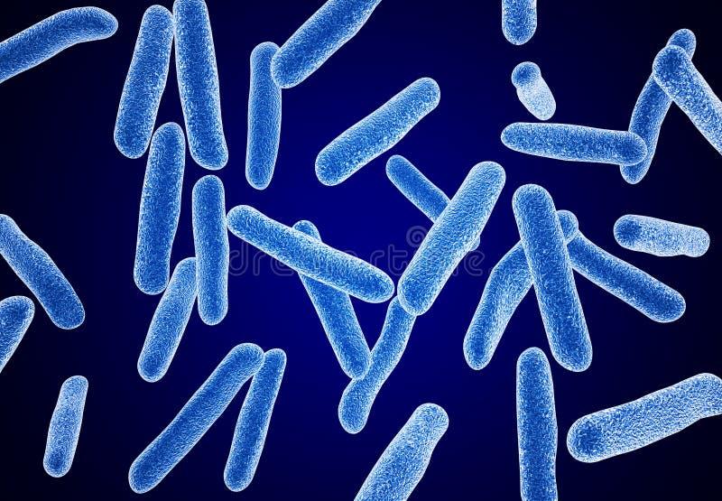 宏观的细菌 免版税图库摄影