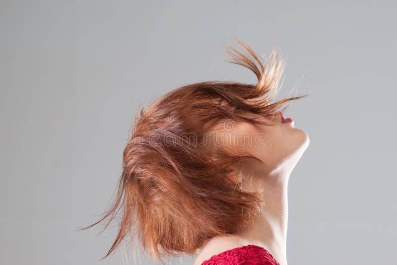 宜人的感觉 女性发型广告 库存照片
