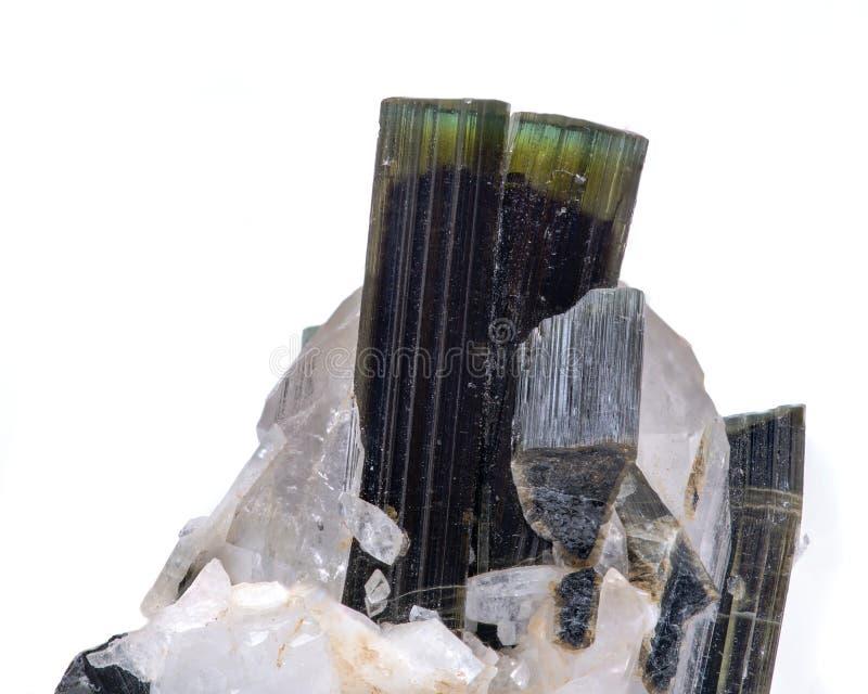 宝石质量绿色电气石水晶在与一块好的清楚的黄玉的矩阵从巴基斯坦在白色隔绝了 库存照片