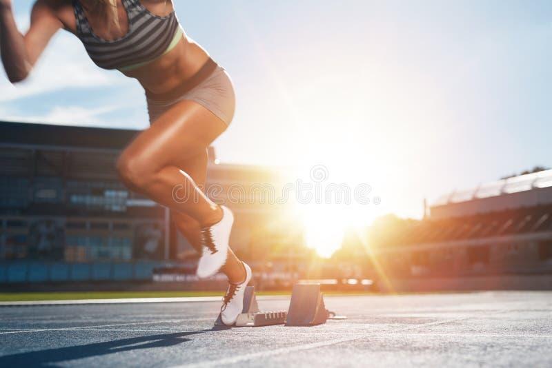 实践在竞技体育场内的赛跑者 库存图片