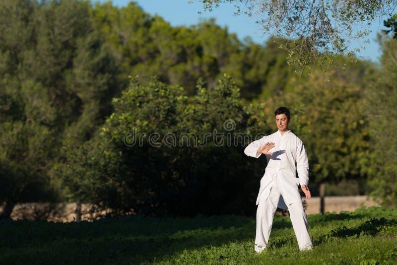 实践太极拳的人在公园 免版税库存照片
