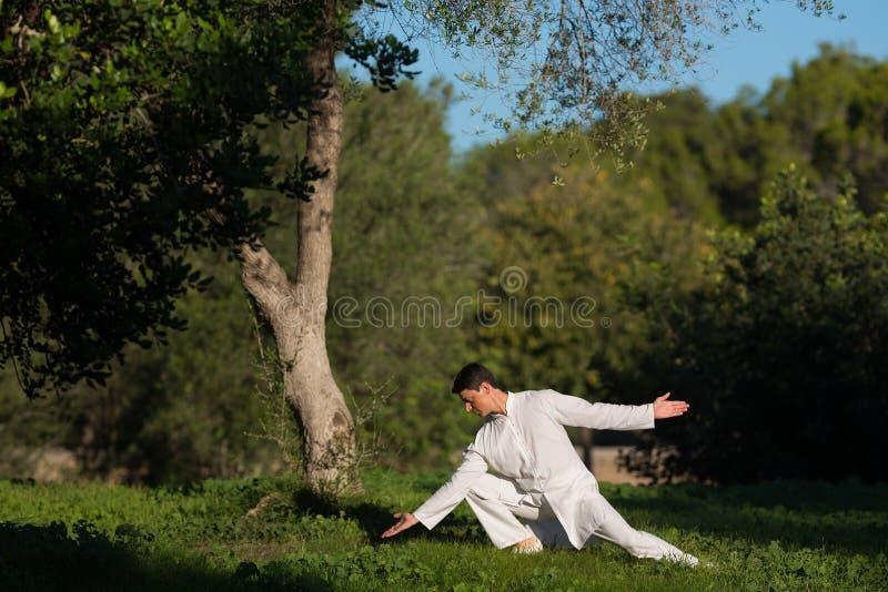 实践太极拳的年轻人户外在公园 库存照片