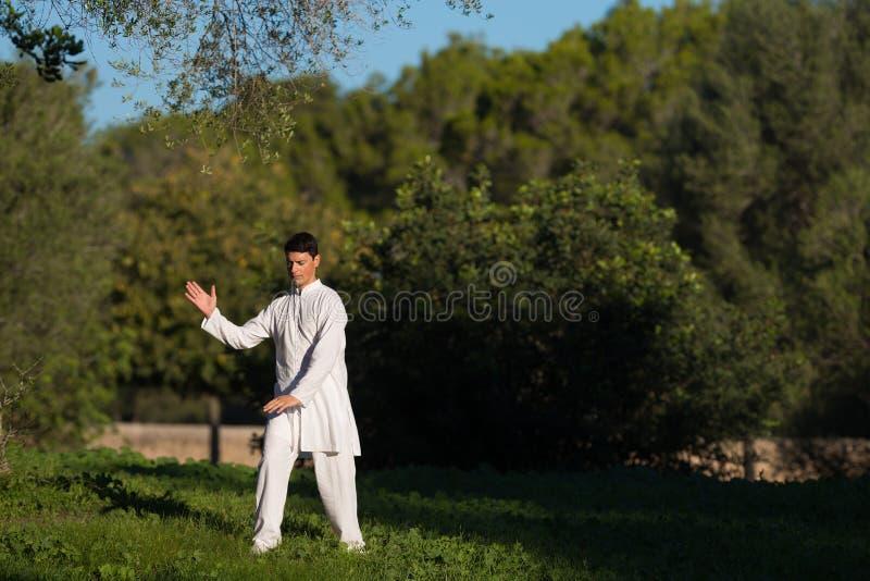 实践太极拳的年轻白种人人在公园 库存图片