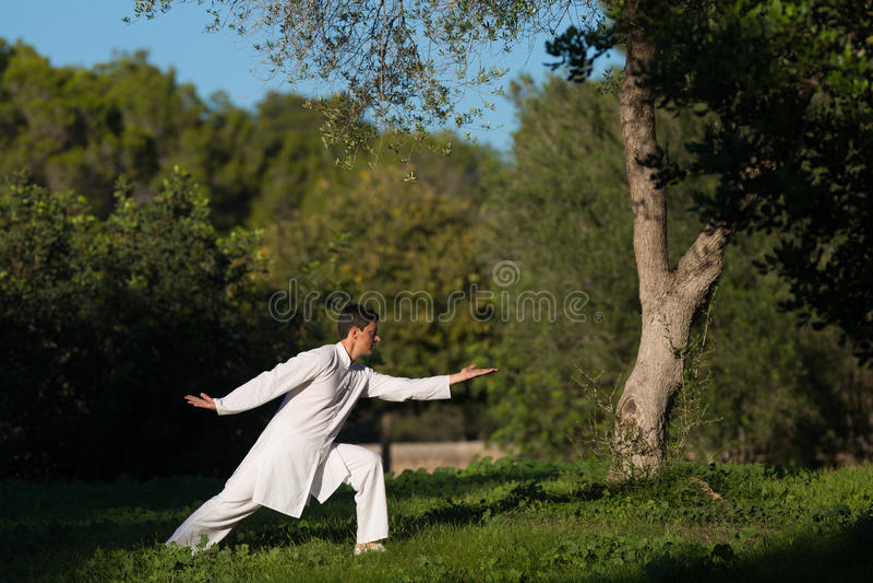 实践太极拳的年轻白种人人户外在公园 免版税库存照片