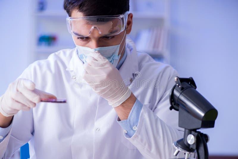 实验员测试血样在医院 图库摄影