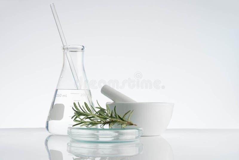 实验室和研究与供选择的草本医学 图库摄影
