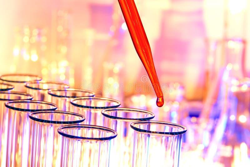 实验室实验室研究科学试管 免版税库存图片