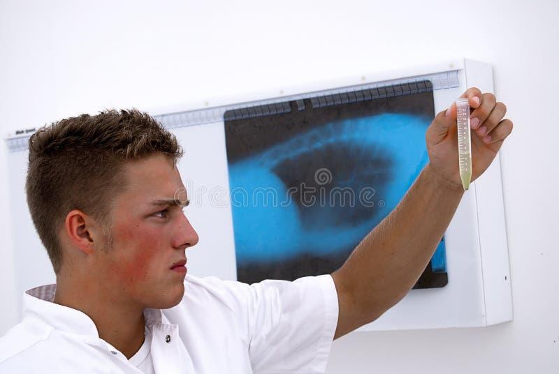 实验室男技术人员 免版税库存图片