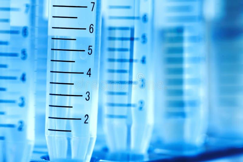 实验室试验管。 免版税图库摄影