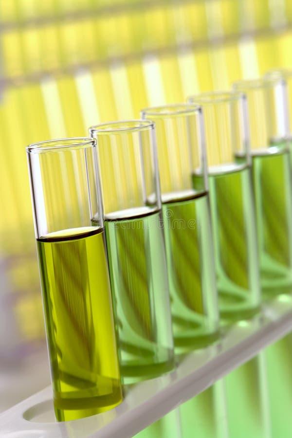 实验室试验管在科学研究实验室 免版税库存图片