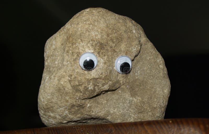 宠爱岩石 库存照片